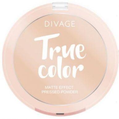 DIVAGE Пудра компактная True Color №01, Fair